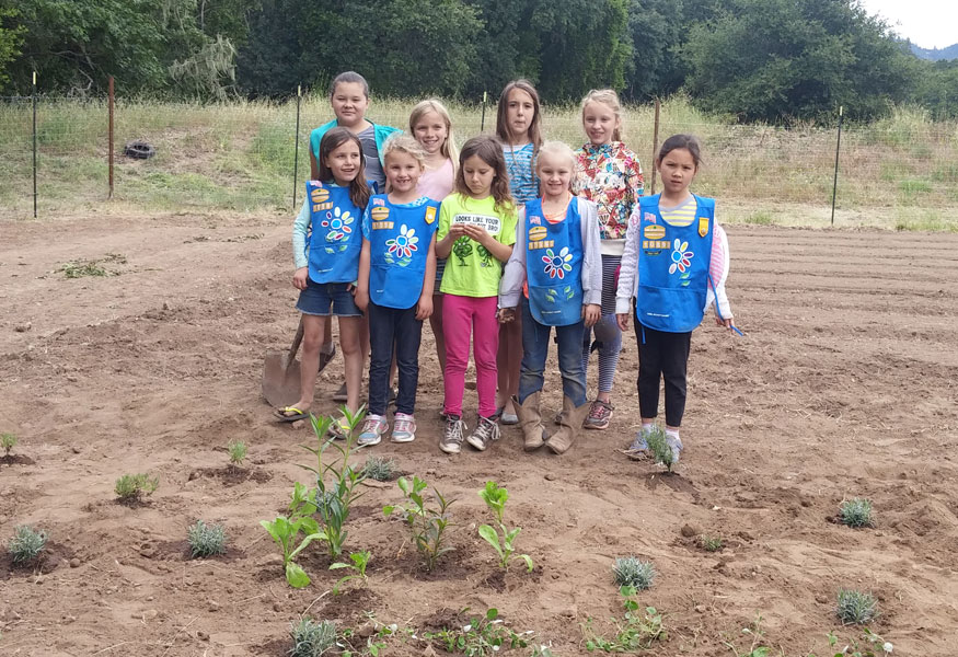 Local girl scouts planted a pollinator's habitat