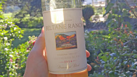 Sonoma Valley Winery Estate Vineyard Sauvignon Blanc Certified Sustainable Winegrowing