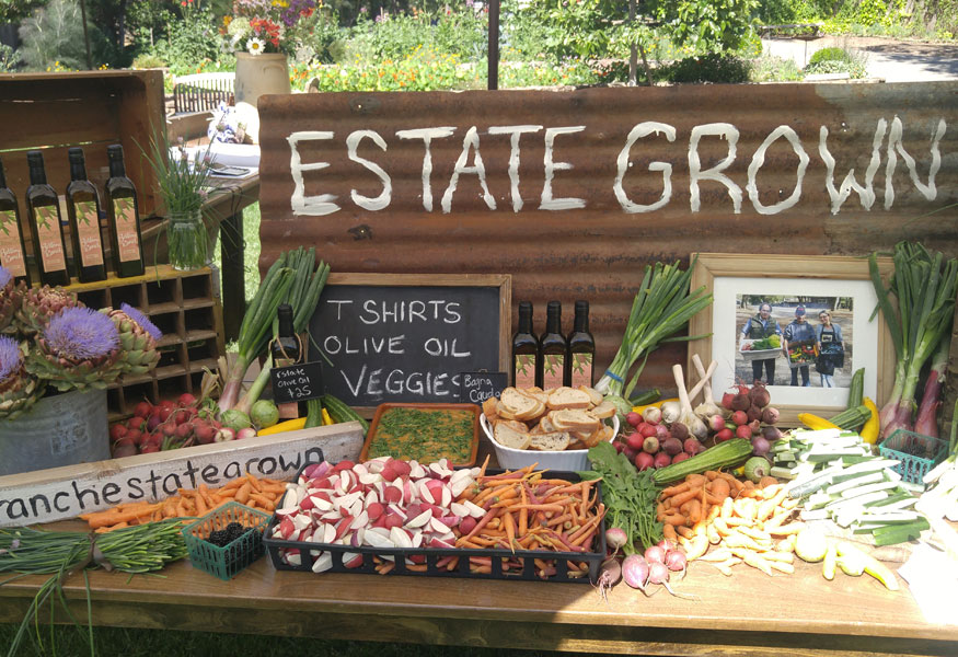Sonoma Valley Working Ranch Farm Stay Produce Garden Catering