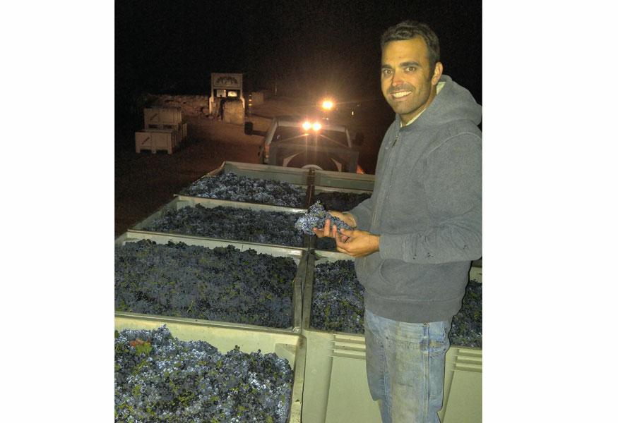 Alex Benward Sonoma Valley Bed & Breakfast Farm Stay Inn & Winery Estate Vineyard Zinfandel Certified Sustainable