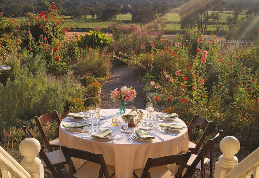 Sonoma Valley Wine Country Glen Ellen Intimate Wedding Small Event Elopement Venue Estate Grown Organic Catering Vineyard Views