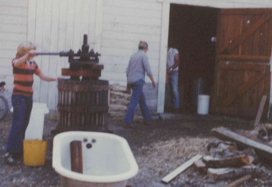 Historic Sonoma Valley Bed & Breakfast Farm Stay Inn & Winery Estate Vineyard Zinfandel Certified Sustainable