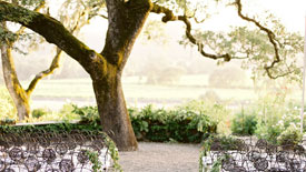 Sonoma Valley Event Venue Wine Country Weddings Beltane Ranch